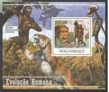 Mozambique Prehistory Prehistoric Homme
