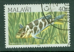Malawi: 1984   Fishes   SG697    40t    Used