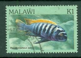 Malawi: 1984   Fishes   SG700    1K    Used - Malawi (1964-...)