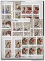 8x MANAMA - Animals - Birds - Parrots - CTO - Imperf. - Full Sheets
