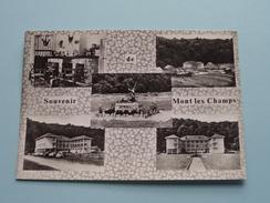 Bohan S/Semois Vacantiecentrum De Mont Les Champs () Anno 1964 ( Zie Foto Details ) !!