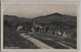 Wald Appenzell Im Frühling - Photo: Josef Fischer No. 3004 - AR Appenzell Rhodes-Extérieures