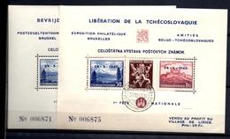 AX-119: BELGIQUE:    Lot Blocs  Exp Philathélique Bruxelles 28/10/1945 (2 Blocs Différents)