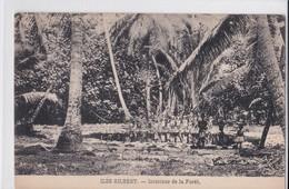 Carte 1915 ILES GILBERT / INTERIEUR DE LA FORET - Micronésie