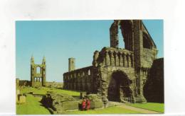Postcard - The Cathedral Ruins,St Andrews Very Good - Unclassified