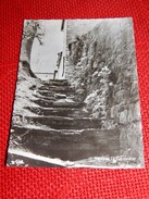 GODINNE  -   Le Vieil Escalier