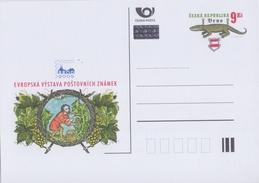 CESKA REPUBLIKA :2005: Not Travelled Postal Stationery :  DRUIVEN,RAISINS,GRAPES,WIJN,VIN,WINE MAKING,BRNO,