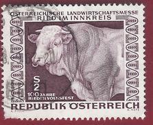 1967 - Cattle (Bos Primigenius Taurus) - Yt:AT 1077 - Used