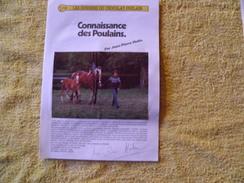 Dossiers Connaissances Chocolat Poulain. Connaissance Des Poulains. - Poulain