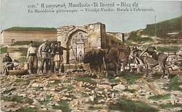 Pays Div- Ref H283- Macedoine -yenidje Vardar -boeufs A L Abreuvoir -guerre 1914-18  -postcard In Good Condition  - - Macedonia