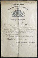 HAMBURG 1916, Einbürgerungsurkunde Der Freie N Und Hansestadt Hamburg, Pracht