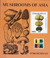Turkmenistan 2000  Mushrooms Funghi Champignons Sheet Nuovo MNH Lycoperdon  Perlatum - Turkmenistan