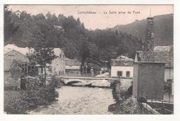 SALMCHATEAU - La Salm Prise Du Font. - Vielsalm