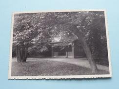 Geneeskundig GESTICHT / SANITAIRE Prieeltje () Anno 1946 ( Zie Foto Voor Details ) !! - Boechout