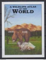 L31 Liberia - MNH - Animals - Bears