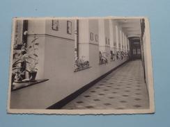 College Van Het Eucharistisch Hart / Klassengang () Anno 19?6  Zie Foto Voor Details ) !! - Essen