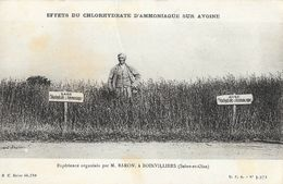Effets Du Chlorhydrate D'Ammoniaque Sur L'Avoine, Expérience Par M. Baron à Boinvilliers - Carte Non Circulée - Cultures