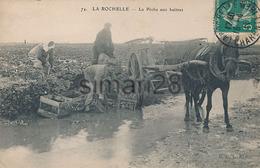 LA ROCHELLE - N° 74 - LA PECHE AUX HUITRES - La Rochelle