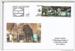 CC CON MAT PRIMER DIA MADRID MUSEO DE CIENCIAS NATURALES ELEFANTE ELEPHANT MUSEUM - Elefantes