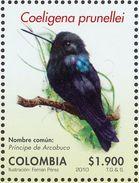 Colombie. Colombia. 2010  Black Inca    Coeligena Prunellei