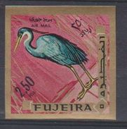 Fujeira. 1969.   Western Reef Heron    Egretta Gularis