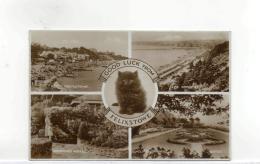 Postcard - Felixstowe 4 Views Plus Cat - Posted 20th July 1938 Very Good - Postcards