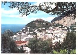 Napoli - Lotto 3 Fotografie, CAPRI: PANORAMA, INGRESSO A GROTTA AZZURRA, PANORAMA E STRADA PER ANACAPRI - PERFETTA N37 - Riproduzioni