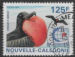 Nouvelle-Calédonie Oblitérér, No: 698, Coté 2,30 Euros, Y & T, USED - Neukaledonien