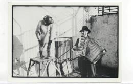 Postcard - Jimmy Kennedy, Composer Of Red Sails In The Sunset & Friend Very Good - Postcards