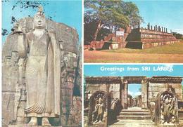 50 X ITALY - Sri Lanka (Ceylon)