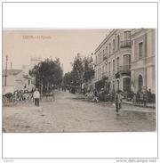 CUTTPA4730CPA-LFTD4517TABU.Tarjeta Postal De Ceuta.Arboles,ciudad,animales,carros,burro.REBELLO.CEUTA - Burros
