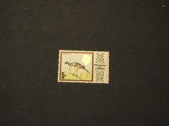 TRINIDAD E TOBAGO - 1973 UCCELLO  5 C. - NUOVI(++)