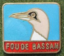 FOU DE BASSAN - OISEAU - BEC - CANADA -    (14) - Animals