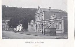 PEPINSTER. - Les Ecoles - Pepinster