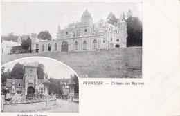 PEPINSTER. - Multivues Du Château Des Mazures - Pepinster