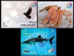 Maldives 2016, Animals, Bird, Crab, Shark, 3val