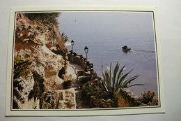 D 17 - Meschers - Les Grottes De Matata