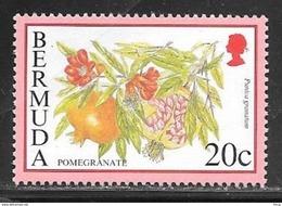 Bermuda 1975 20 Cents Coralita Mint Never Hinged