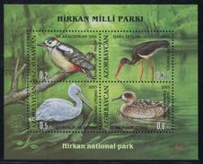 Q416.-. AZERBAIJAN .-. 2013 - MINISHEET .-. BIRDS / AVES .-. WATERBIRDS : STORK,DUCK,PELICAN AND WOODPECKER