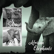 Q422.-. GHANA - 2014 - MINISHEET - ELEFANTES / ELEPHANTS