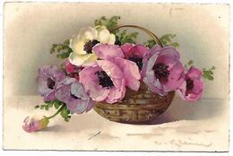 Fleurs - Illustrateur Catharina KLEIN - 2194 - Klein, Catharina
