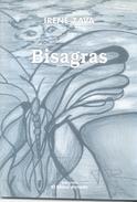 BISAGRAS LIBRO AUTORA IRENE ZAVA POESIA EDICIONES EL MONO ARMADO AÑO 2007 64 PAGINAS PRIMERA EDICION - Poesía