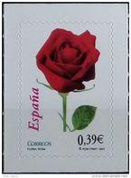 Spain, 2007, Rose