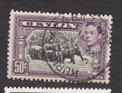 Ceylan, Ceylon, éléphant, George VI