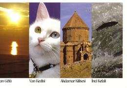 20G : Turkey Akdamar Kilisesi,Van Kedisi Multiview Postcard With Red Meter Imprint Stamp - Türkei