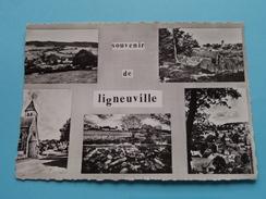 Souvenir De LIGNEUVILLE - Anno 1963 ( Zie Foto Voor Details ) !!