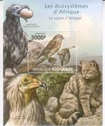 Togo 2011 Animals Africa Block Vogel Bird S/s - Togo (1960-...)