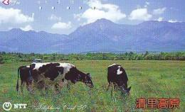 Télécarte JAPON * 250-447 * VACHE (718)  COW * KOE * BULL * TAUREAU * KUH * PHONECARD JAPAN * TK * VACA TAURUS - Cows