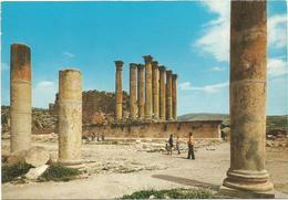T2870 Jordan - Jerash Gerasa - Arthemis Temple / Non Viaggiata