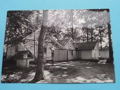 """"""" VINNEBOS """" Kampplaats Onder De Eikenbomen WEZEMAAL () Anno 1972 ( Zie Foto Voor Details ) - Rotselaar"""